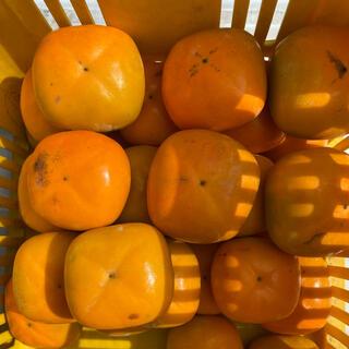 和歌山県産 タネなし柿 10kg