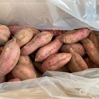 【自家製 無農薬】安納芋(さつまいも)約7kg