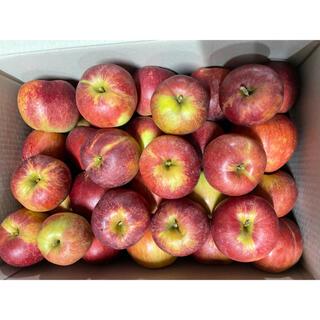 10. 信州産 加工用リンゴ 紅玉 箱込み 10kg