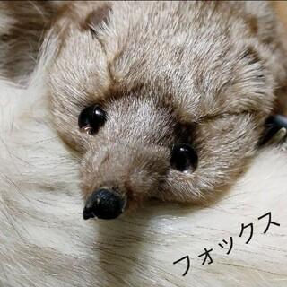 アプラン 高級毛皮 フォックスファー 顔 足 尾 付き 新品(マフラー/ショール)