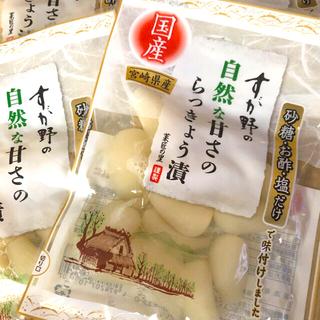 すが野 国産漬物 宮崎産 らっきょう漬物 5袋