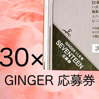 セブンティーン(SEVENTEEN)の【30枚】SEVENTEEN GINGER サイン入りチェキ 応募券(K-POP/アジア)