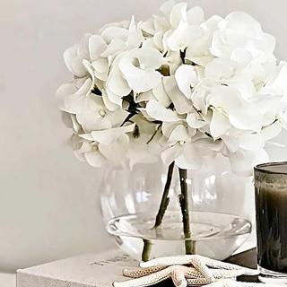 Francfranc - ガラスベース 花瓶 ボウル