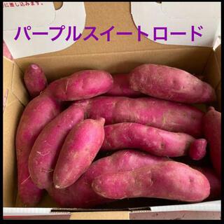 長野県産パープルスイートロード 1.2キロ(野菜)