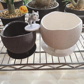 鉢 卵型 大・小 2鉢セット 下皿付き(プランター)