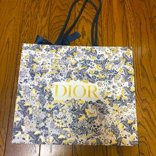 クリスチャンディオール(Christian Dior)のDior ディオール ショップ袋 リボン付き クリスマス限定 ホリデー 美品(ショップ袋)