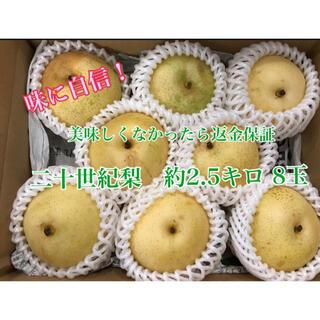 二十世紀梨 家庭用 約2.5キロ 8玉