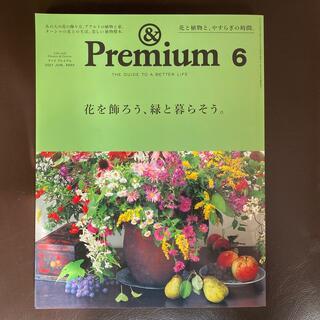 マガジンハウス - &Premium (アンド プレミアム) 2021年 06月号 雑誌