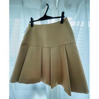 エムズグレイシー(M'S GRACY)のエムズグレイシー スカート (ひざ丈スカート)