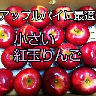 小さい紅玉りんご家庭用16個