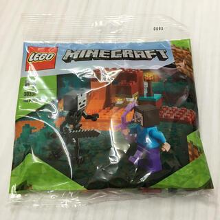 Lego - レゴ マインクラフト    30331★新品