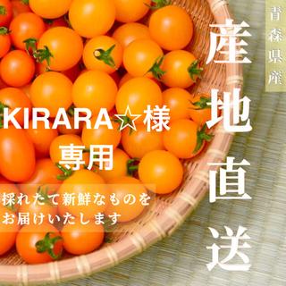 【イエローミミ】2kg  KIRARA☆様専用 採れたて☘️産地直送いたします(野菜)