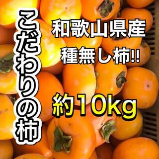 種無し柿 約10キロ ご家庭用