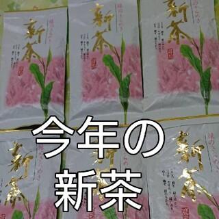 静岡県産 深蒸し茶 100g6袋 静岡茶(茶)