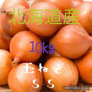 北海道産玉ねぎss 10kg