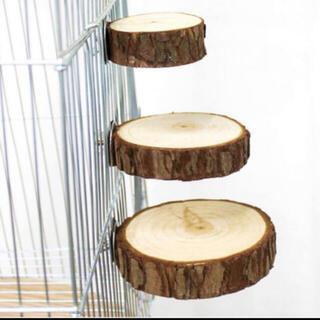 【Mサイズ】直径約8cm前後 丸い止まり木 小動物 バードトイ 鳥のおもちゃ(鳥)