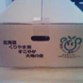 北海道産玉ねぎMサイズ10kg