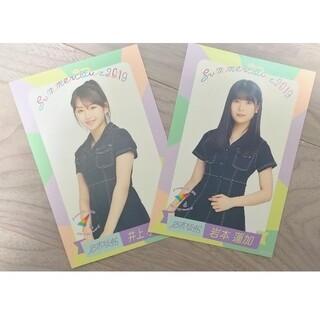 乃木坂46 - 井上小百合、岩本蓮加ポストカード