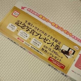 キタムラ(Kitamura)のスタジオマリオ 記念撮影プレゼント券(その他)