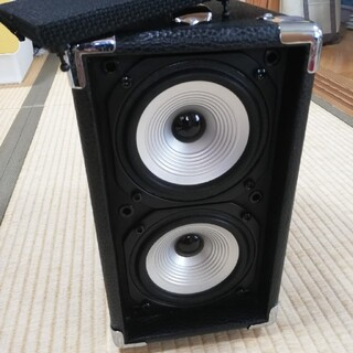 AAD by Phil Jones CUB AG-100 アコースティック楽器用(ギターアンプ)
