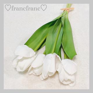 フランフラン(Francfranc)のfrancfranc チューリップ 4本セット(その他)