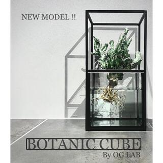 ★新モデル★Botanic Cube★水耕栽培キット 鉢 プランター アイアン(プランター)