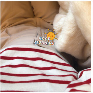 Ralph Lauren - Ralph Lauren RED border long t♥️