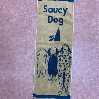Saucy Dogタオル