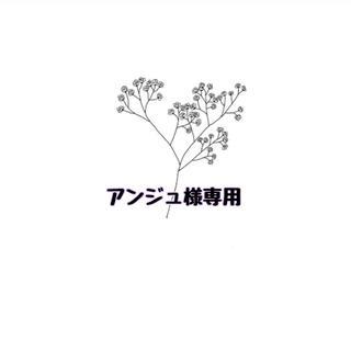 アンジュ様専用 20(その他)