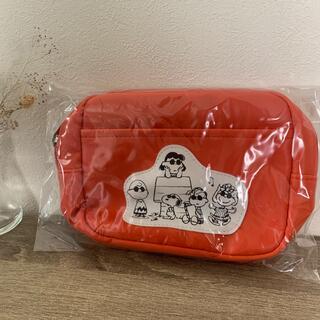SNOOPY - steady 付録 スヌーピー ダブルファスナーポーチ