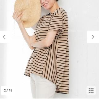 ニジュウサンク(23区)の23区[洗える]コットンビックシルエットボーダーTシャツ(カットソー(半袖/袖なし))