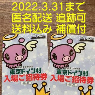 東京ドイツ村 チケット 2枚