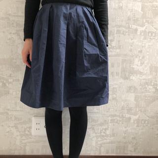 ecruefil - ecruefil スカート