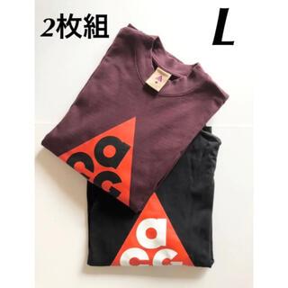 NIKE - 【美品】NIKE ACG ロングスリーブ長袖Tシャツ 厚手  2枚組 L