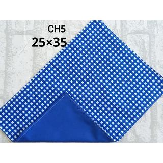 CH5 ランチョンマット チェック柄 ブルー ナフキン ハンドメイド(外出用品)