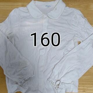 シャーリーテンプル(Shirley Temple)の160清楚丸襟バラカットソーブラウス(ブラウス)