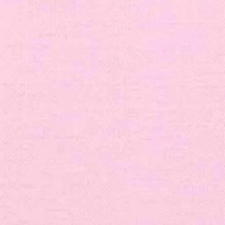 エディットフォールル(EDIT.FOR LULU)のbrandy melville ブランディーメルビル エンボス カットソー(カットソー(長袖/七分))