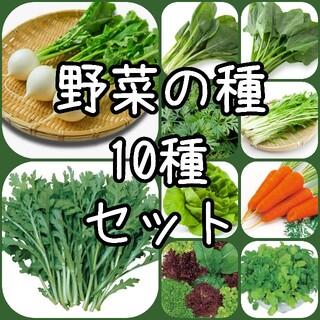 【野菜の種】10種セット 種子(その他)