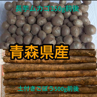 青森県産ごぼうと長芋ムカゴ