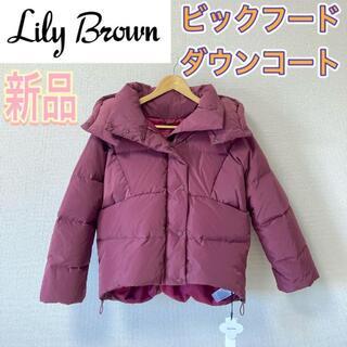 リリーブラウン(Lily Brown)の【限定品】リリーブラウン(Lily brown)ビッグフードダウンコートパープル(ダウンコート)