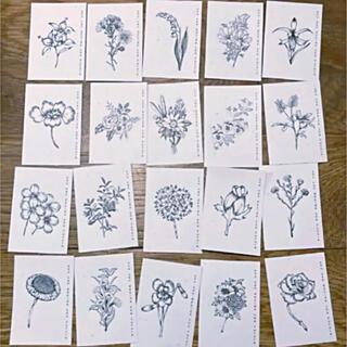 【kt5450】フラワー ボタニカル エンボス加工シール 20枚 花 スケッチ