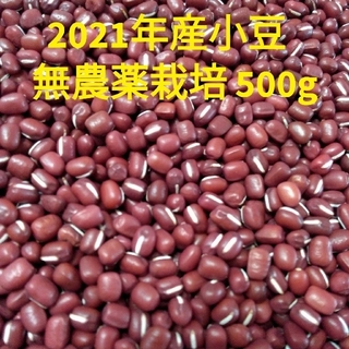 2021年産 小豆 500g 家庭用