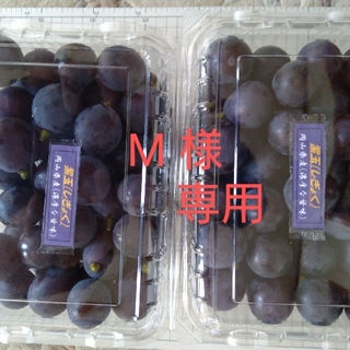 M 様専用 ブドウ、紫玉、2.4kg. 加工用(フルーツ)