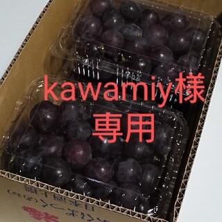 kawamiy様専用  加工用、ブドウ、紫玉、2.4kg訳あり(フルーツ)