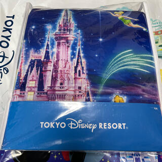 Disney - ディズニーリゾート 新作 花火 毛布 1点