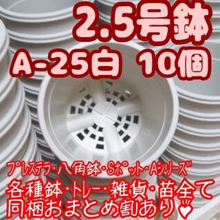 プラ鉢2.5号鉢【A-25】10個 スリット鉢 丸 プレステラ 多肉植物(プランター)
