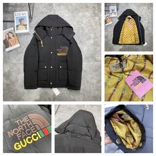 グッチ(Gucci)の 新品 The north face GUCCI  -110182(ポーチ)