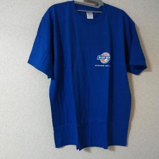 🏝️🍦沖縄ブルーシールTシャツ ユニセックスLサイズ