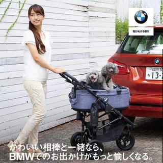エアバギー BMW コラボ