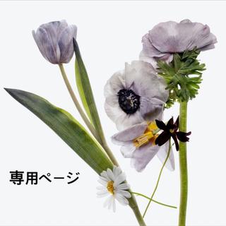 CHANEL - 未開封 CHANEL 💓 新作 ココハンドル S 24㎝